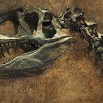 Un fósil de dinosaurio es hallado en la región de Magallanes