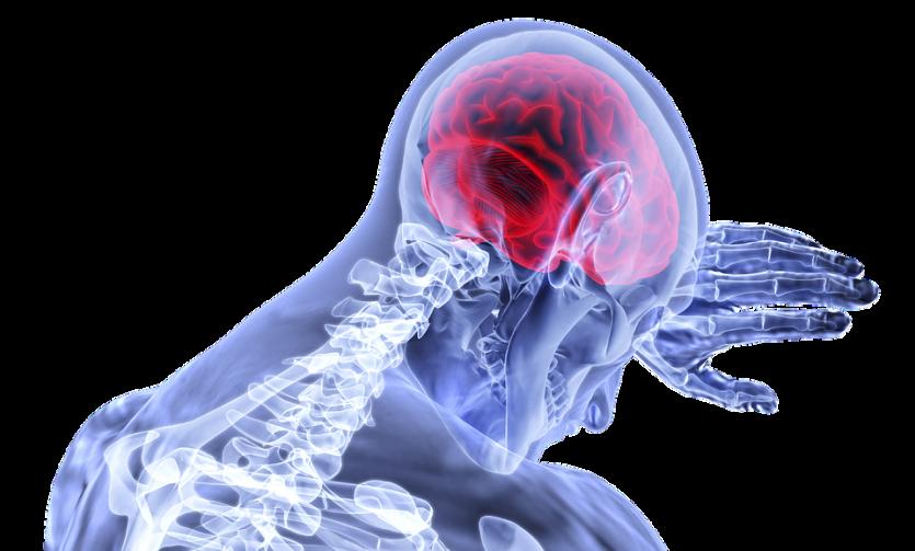 El LSD provoca un nuevo tipo de orden en el cerebro según estudio