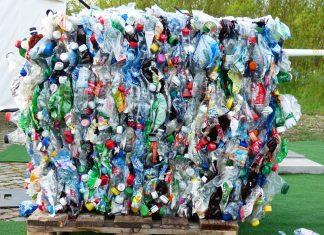Bacterias capaces de comer plástico