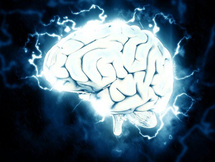 Nuestro cerebro consume mucha energía eléctrica