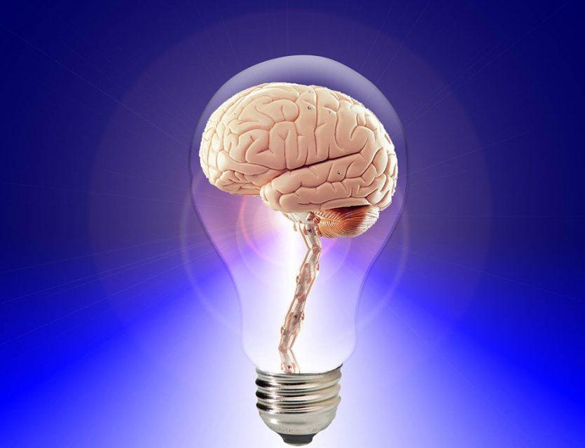 Desmontemos algunos mitos acerca del cerebro