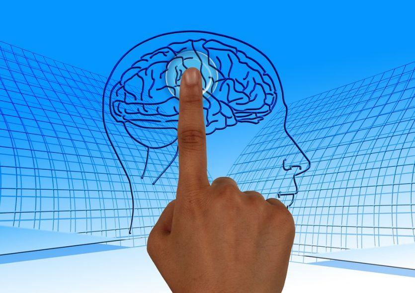 Nuestro cerebro necesita oxigeno y glucosa