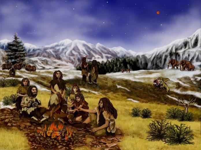 El cerebro de neandertal en un laboratorio