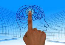 El cerebro es quien determina la edad