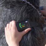 Tecnología que te permite saber el estado de salud de tu mascota