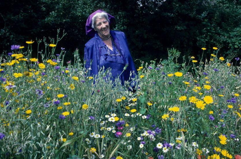 Miriam Rothschild, murió en el año 2005