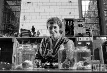 Miriam Rothschild, la reina de las pulgas