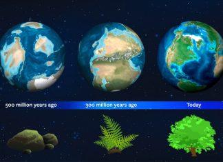 Astrónomos usan historia de la tierra como guía para vegetación en nuevos mundos