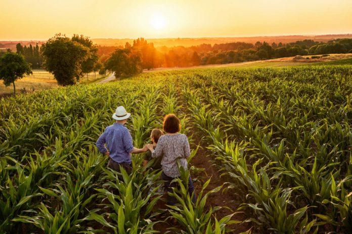 Los agricultores del futuro ya están aquí