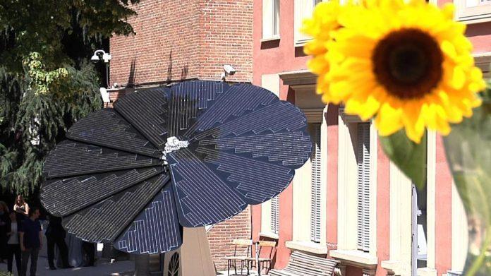 Girasol Solar: Un Sistema inspirado en la Naturaleza