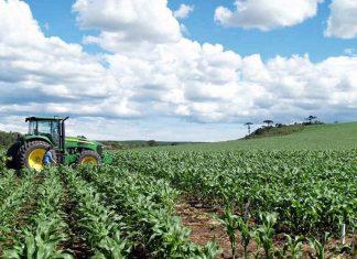 Desarrollos automatizados en el sector Agrícola en China