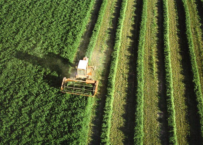 Ahmad Al-Mallahi y el método de agricultura sostenible