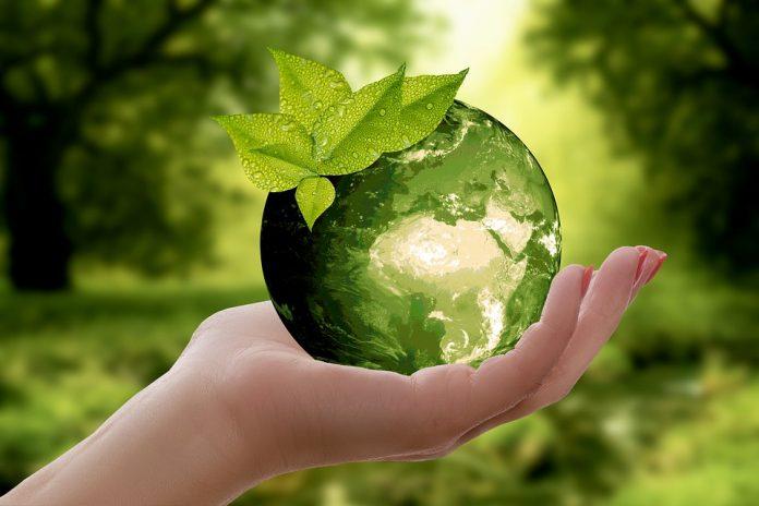 Reciclaje de pilas