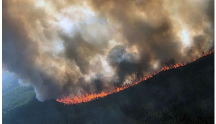 cambio climático efectos en Alaska