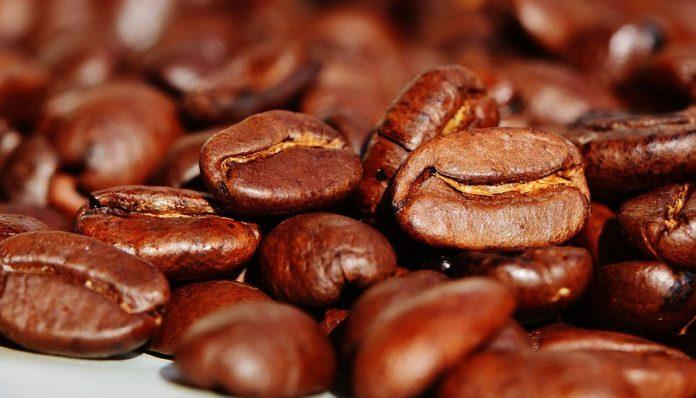 enfermedades del café