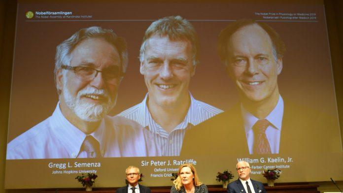 Premio Nobel de Medicina 2019