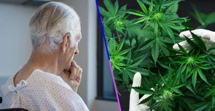 Alzheimer y THC