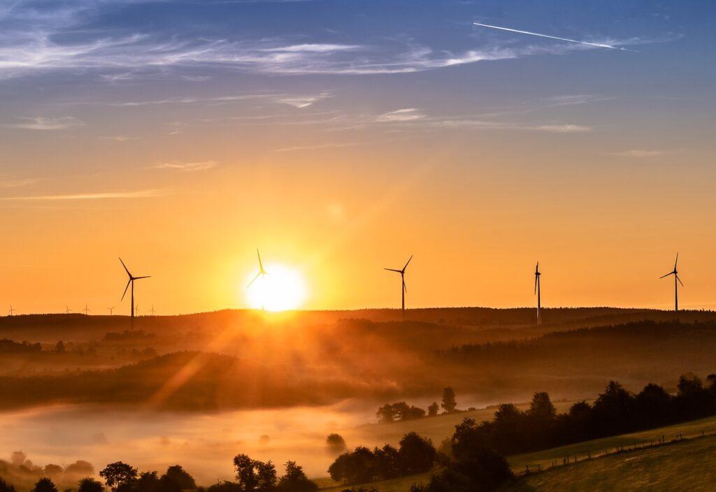 parque eólico para generación de eléctricidad