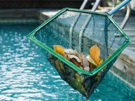 mantener la piscina limpia en otoño